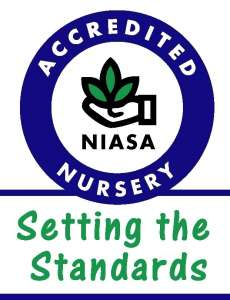 Nursery & Garden Setting the Standards